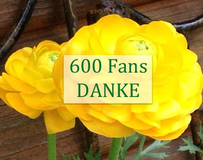 600Fans